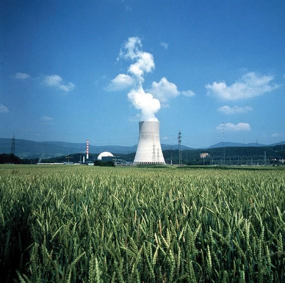 АЭС Гёсген на фоне поля. Швейцария. Фото
