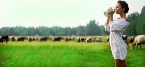Девушка в белом платье пьет молоко на зеленом поле среди коров
