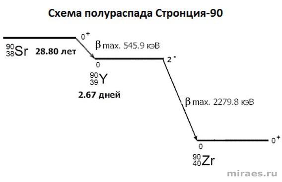 Схема распада Стронция-90