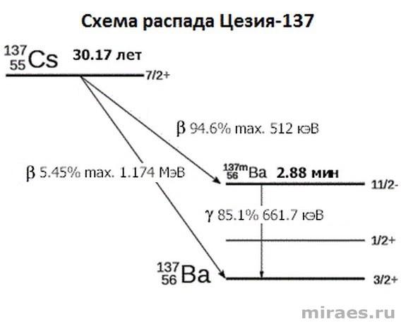 Схема распада Цезия-137